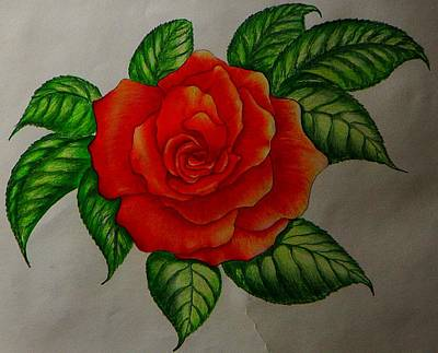 Red Rose Art Print by Ron Sylvia