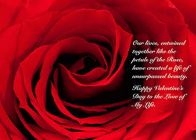 Photograph - Red Rose Valentine by Joni Eskridge