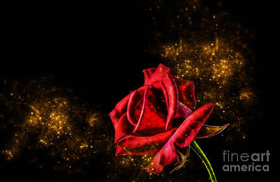 Digital Art - Red Rose With Pixie Dust by Tracey Everington