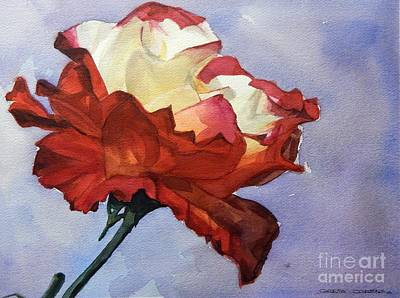 Painting - Watercolor Of A Red And White Rose On Blue Field by Greta Corens