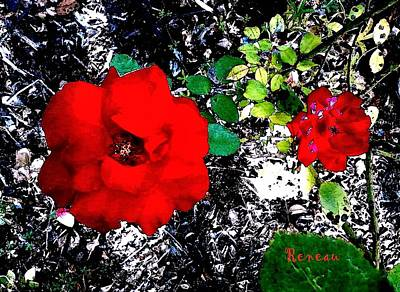 Photograph - Red Roses Lg And Sm by Sadie Reneau
