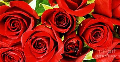 Photograph - Red Roses by Rachel Hannah