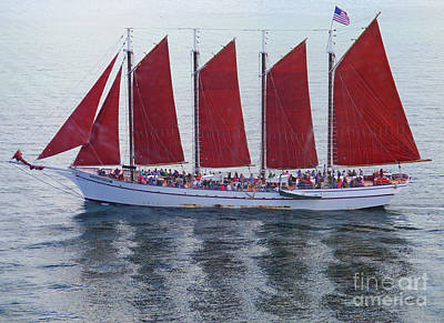 Photograph - Red Sails by Randall Weidner