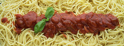 Royalty-Free and Rights-Managed Images - Red Sauce and Spaghetti Panorama by Steve Gadomski