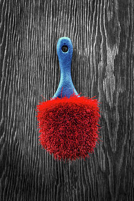 Photograph - Red Scrub Brush On Plywood 56 On Bw by YoPedro