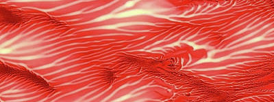 Red Sea Abstract Landscape Panoramic Original by Amy Vangsgard
