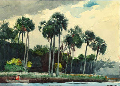 American Painters Painting - Red Shirt Homosassa Florida by Winslow Homer