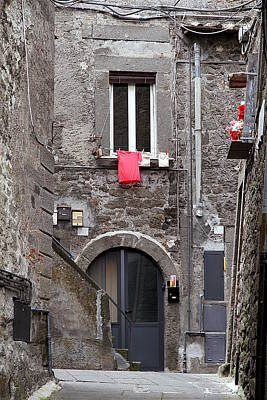 Photograph - Red Shirt by Valentino Visentini
