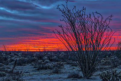 Photograph - Red Sky At Morning by Peter Tellone
