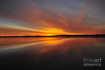 Photograph - Red Sky At Morning by Terri Gostola
