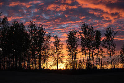 Photograph - Red Sky At Night by Cathy Mahnke