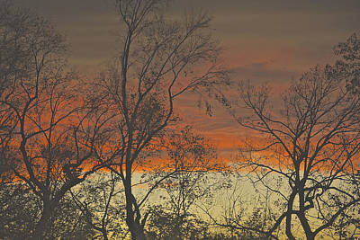 Photograph - Red Sky At Night by Gwendolyn Christopher