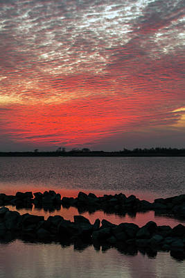 Photograph - Red Sky At Night by Liza Eckardt