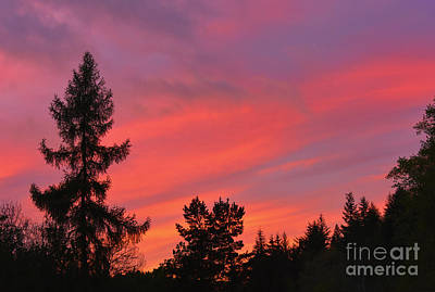Red Sky At Night. Art Print by Stan Pritchard