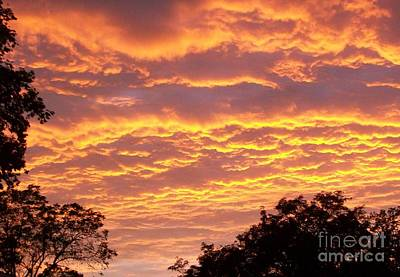 Sky Scape Photograph - Red Sky Delight by Marsha Heiken