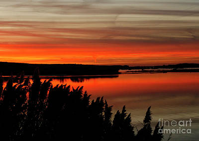 Red Sky On The Illinois River Art Print