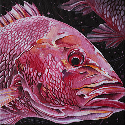 Painting - Red Snapper by William Love