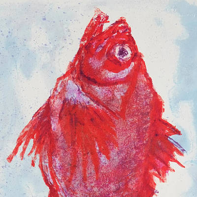 Red Snapper,head  Art Print by Martin Stankewitz