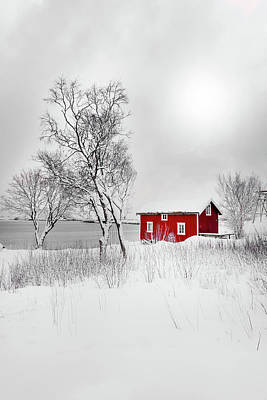 Photograph - Red Solitude by Philippe Sainte-Laudy