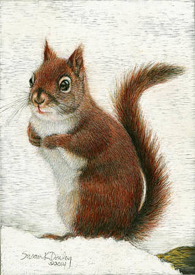 Painting - Red Squirrel In The Snow by Susan Donley