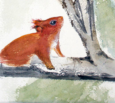Art Print featuring the painting Red Squirrel by Sibby S