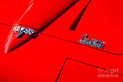 Photograph - Red Stingray by Dennis Hedberg