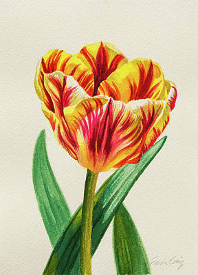 Tulip Mania Painting - Red Striped Yellow Tulip 1 by Fiona Craig