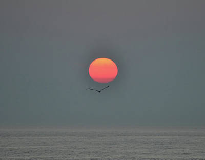 Digital Art - Red Sun Above The Atlantic Ocean by Bill Cannon