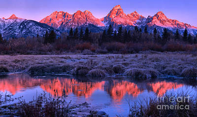 Photograph - Red Sunirse Teton Peaks by Adam Jewell