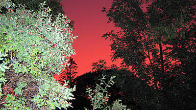 Photograph - Red Sunset by Emma Frost