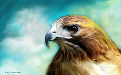 Red Tail Hawk  Art Print by Crispin  Delgado