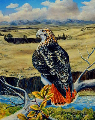 Painting - Red Tail Hawk Of Montana by Ruanna Sion Shadd a'Dann'l Yoder