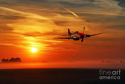 Red Tail Sunrise Art Print by J Biggadike
