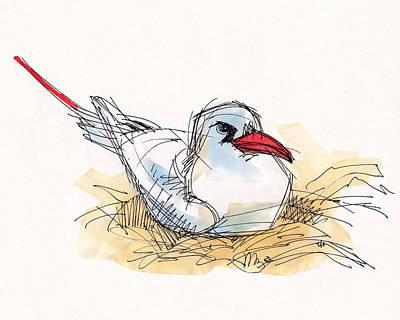 Painting - Red-tailed Tropicbird On Aitutaki by Judith Kunzle