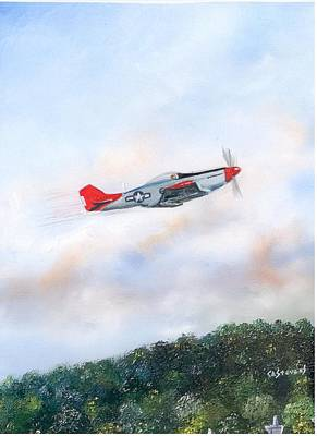 Painting - Red Tails by Craig A Stevens