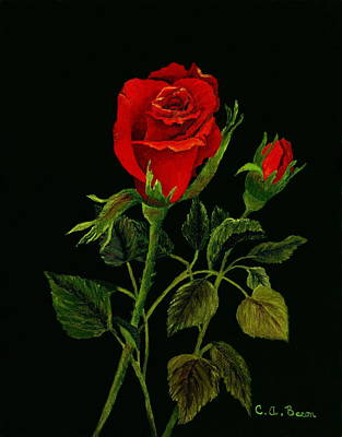 Painting - Red Tango Rose Bud by Charlotte Bacon