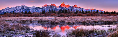 Photograph - Red Teton Peaks In The Willows by Adam Jewell