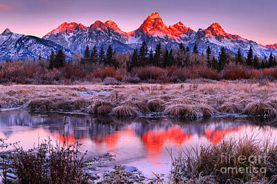 Photograph - Red Teton Peaks In The Willows Landscape by Adam Jewell
