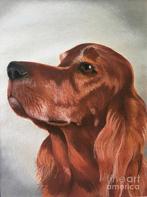 Pastel - Red The Irish Setter by Cindy DeGraw