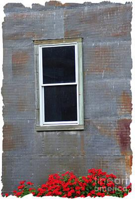 Photograph - Red Tin Window by Lori Mellen-Pagliaro