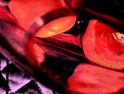 Red Tomatoe Two Art Print