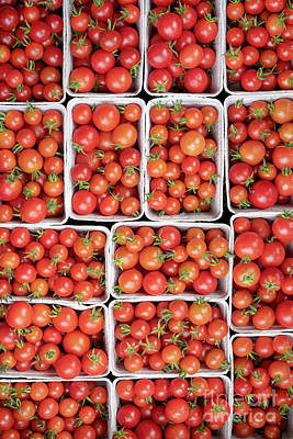 Photograph - Red Tomatoes by Tim Gainey