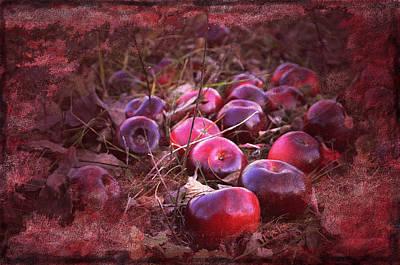Shades Of Red Digital Art - Red Tones by Damijana Cermelj