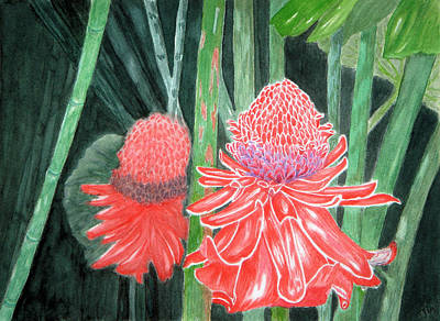 Red Torch Ginger Art Print