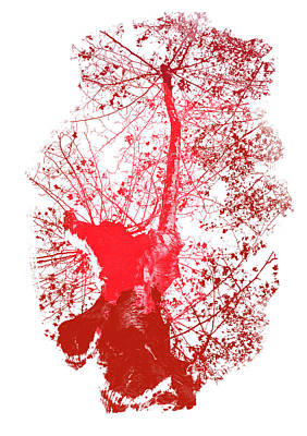 Painting - Red Tree In Autumn  by Andrea Mazzocchetti