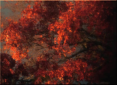 Photograph - Red Tree Scene by Mikki Cucuzzo