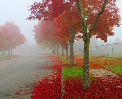 Photograph - Red Trees In The Fog by Karen Molenaar Terrell
