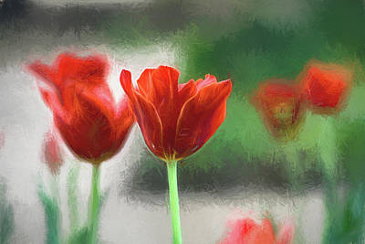 Photograph - Red Tulips Filter 033118 by Rospotte Photography