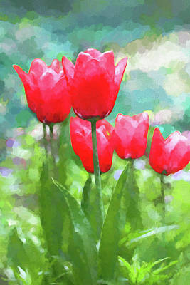 Photograph - Red Tulips Flowers In Spring Time by Jennie Marie Schell
