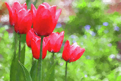 Photograph - Red Tulips In The Spring Garden by Jennie Marie Schell
